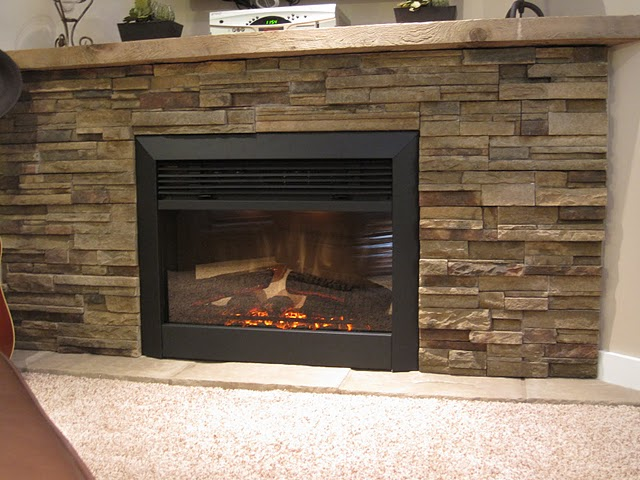 screen collections shot products grande patio fireplaces dimplex palace pm electric at insert fireplace firebox revillusion